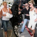 Celebrity Leather Handbags as Britney Spears Collection