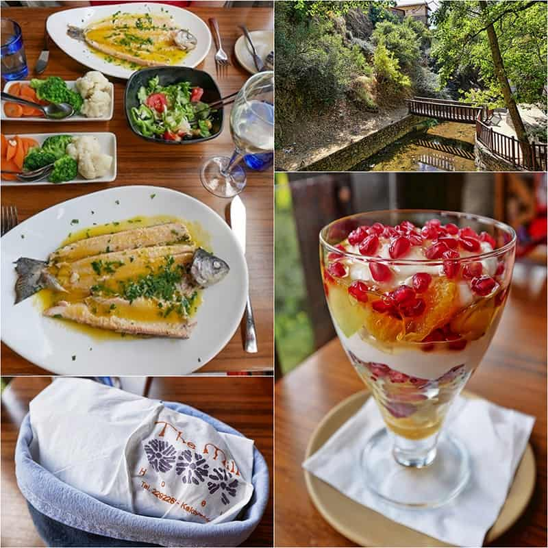 Lunch at the Mill Hotel and Restaurant in the Troodos Mountains, Cyprus