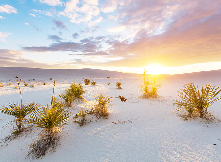 10-Day New Mexico Road Trip Itinerary • The Blonde Abroad