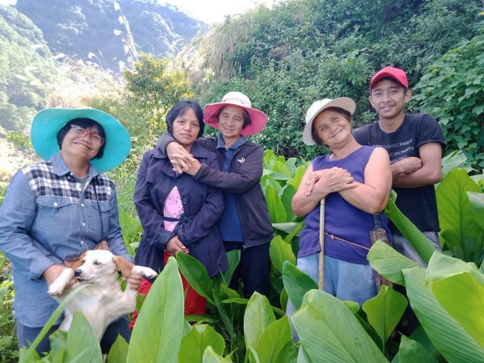 The mother farmers in Tadian